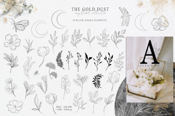 Print on Demand: Botanical Line Art Clipart. Floral Set Graphic Illustrations By Tiana Geo