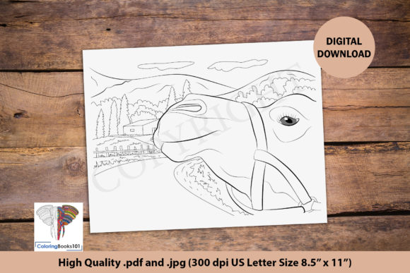 Face of the Camel and House Graphic Coloring Pages & Books Adults By ColoringBooks101