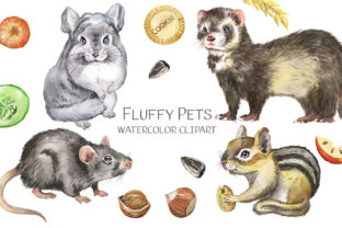 Pets Watercolor Clipart. Rodents Animals Graphic Illustrations By EvArtPrint