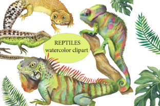 Reptile Watercolor Clipart. Pet. Animals Graphic Illustrations By EvArtPrint