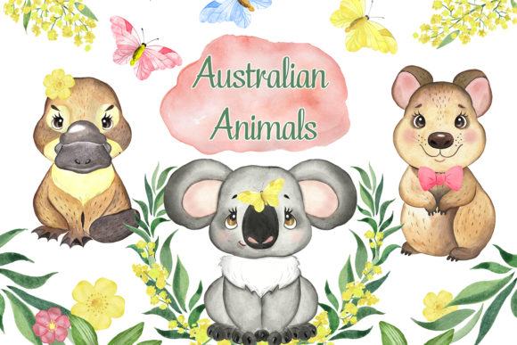 Australian Animals.Koala Platypus Quokka Graphic Illustrations By EvArtPrint