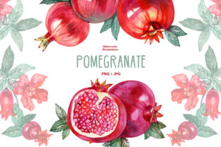 Watercolor Pomegranate Graphic Illustrations By NataliMyaStore