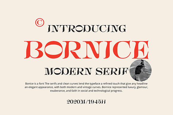 Print on Demand: Bornice Display Font By Damelev.