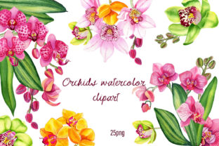 Print on Demand: Orchids Clipart Tropical Watercolor Graphic Illustrations By ElenaZlataArt