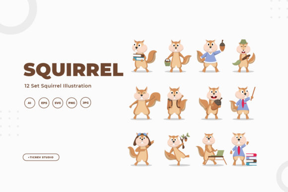 Squirrel Illustration Collection Graphic Illustrations By OKEVECTOR