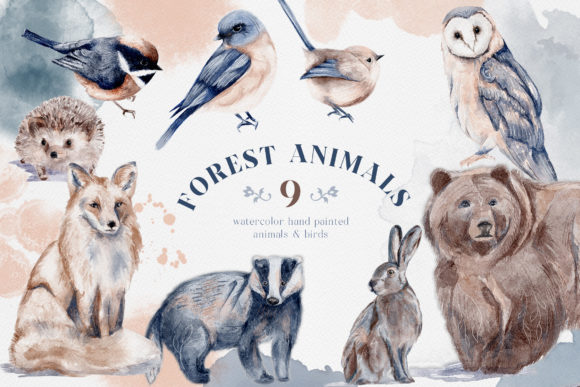 Print on Demand: Watercolor Forest Animals Birds Owl Graphic Illustrations By Busy May Studio