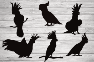 Print on Demand: Cockatoo Bundle, Silhouette, Clipart Graphic Crafts By rayan