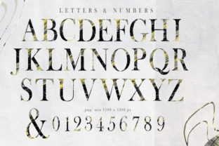 Print on Demand: Artistic Alphabet and Numbers Clipart Graphic Crafts By Tiana Geo