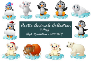 Baby Arctic Animals PNG Illustrations Graphic Illustrations By zhyecarther