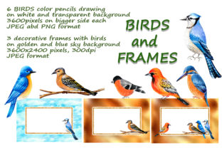 Print on Demand: Decorative Birds, Color Pencils Drawing Graphic Illustrations By Galarta
