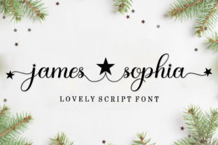 Print on Demand: James Sophia Script & Handwritten Font By bosstypestudio