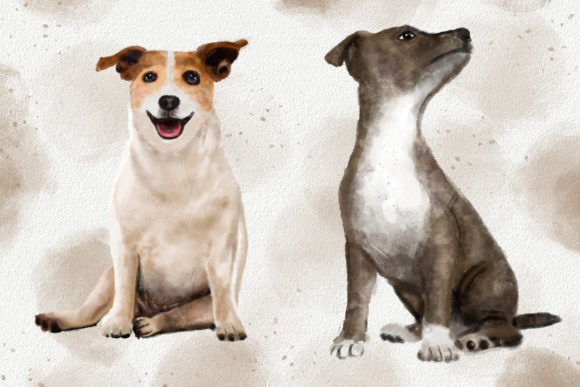Dogs and Cats Watercolor Collection Graphic Download