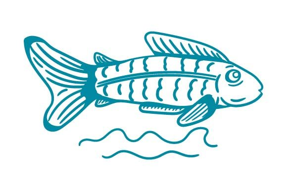 Print on Demand: Fish Hand Drawn Clipart Graphic Crafts By pnajlab