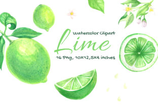 Lime Watercolor Fruit Slice Citrus Graphic Objects By artpanda2018 2