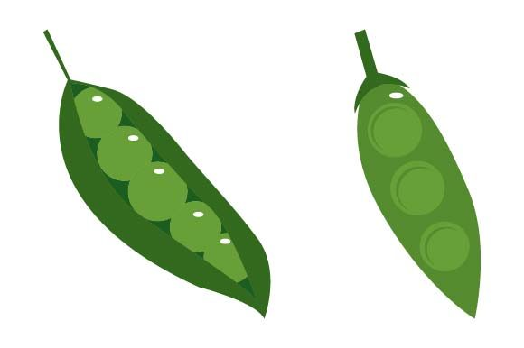 Print on Demand: Peas Clipart Graphic Crafts By pnajlab