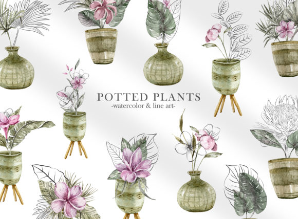 Print on Demand: Watercolor Potted Plants Clipart. Graphic Illustrations By Tiana Geo