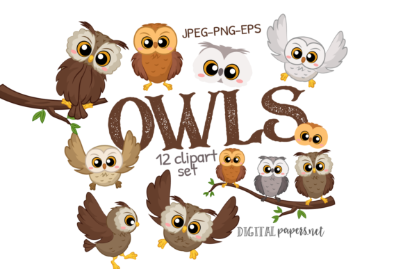 Cute Owls Graphic