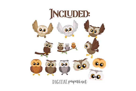 Cute Owls Graphic Download