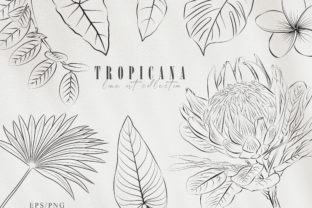 Print on Demand: Line Art Tropical Plants Clipart Set Graphic Illustrations By Tiana Geo