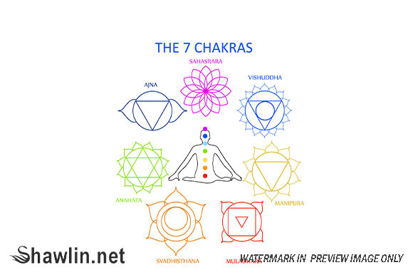 The Seven Chakras of the Human Body Graphic Illustrations By shawlin