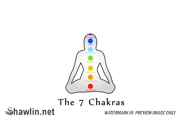 The Seven Chakras with Their Colors Graphic Illustrations By shawlin