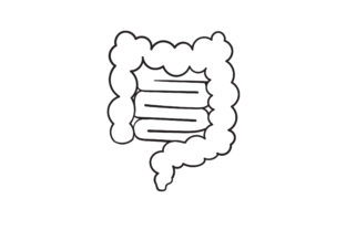 Print on Demand: Doodle Intestines Graphic Icons By GwensGraphicstudio