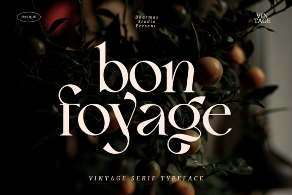 Print on Demand: Bon Foyage Serif Font By dharmas