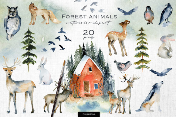 Forest Animals Graphic Illustrations By HappyWatercolorShop
