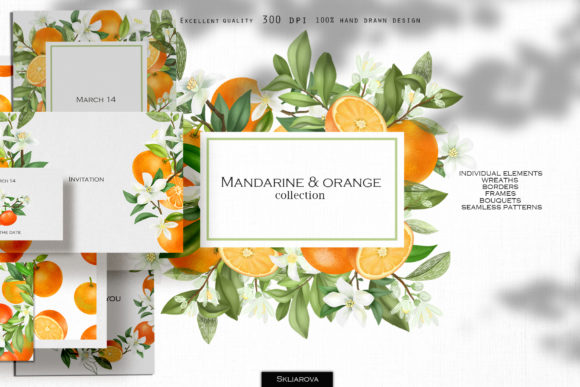 Mandarine & Orange Collection Graphic Illustrations By HappyWatercolorShop