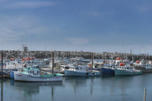 Many Boats in Port Graphic Architecture By impresstore