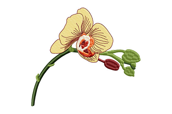 Print on Demand: Yellow Orchid Bud Flower Single Flowers & Plants Embroidery Design By EmbArt