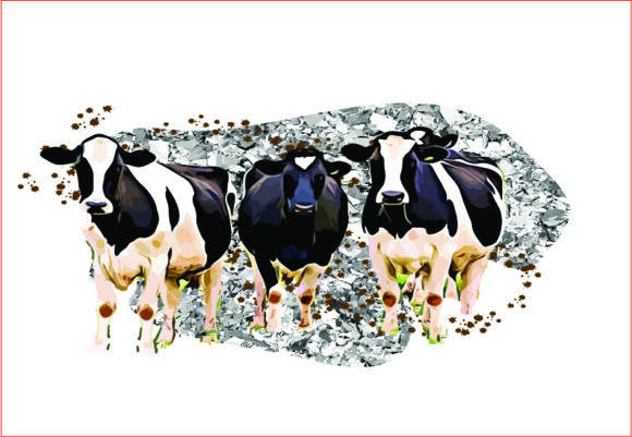 Cows Sublimation Graphics Graphic Graphic Templates By AlaBala