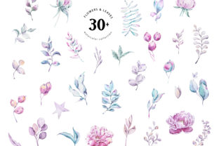 Print on Demand: Watercolor Peony & Eucalyptus Clipart Graphic Illustrations By Tiana Geo