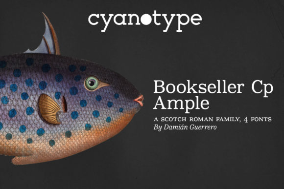 Print on Demand: Bookseller Cp Ample Serif Font By cyanotype