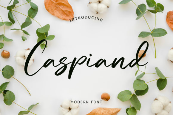 Print on Demand: Caspiand Script & Handwritten Font By formatikastd