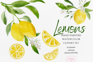 Hand Painted Watercolor Lemon Clipart Graphic Illustrations By Amorclipart