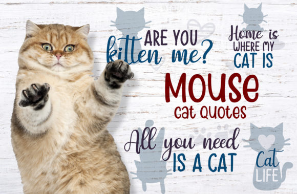 Mouse, Cat Quotes Graphic Crafts By Firefly Designs