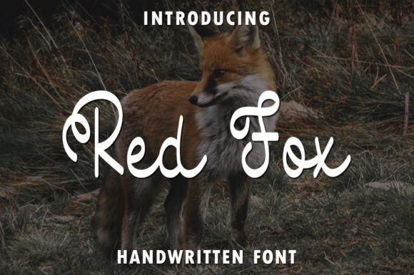 Print on Demand: Red Fox Script & Handwritten Font By rangkaiaksara