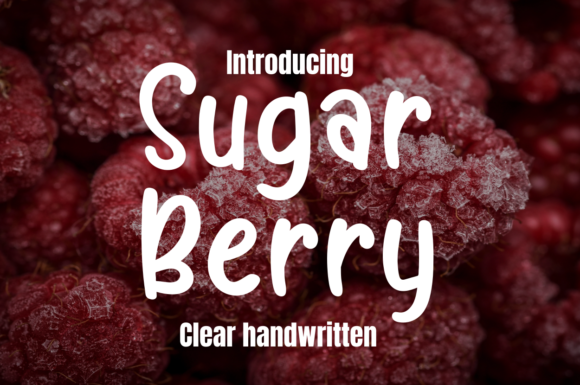 Print on Demand: Sugar Berry Display Font By Letter art studio