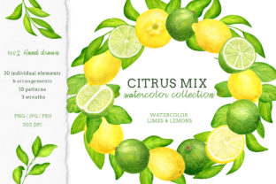 Watercolor Citrus Fruits Clipart Set Graphic Illustrations By Olya Haifisch