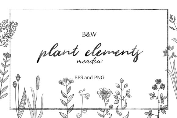 20 Black and White Plant Elements Graphic Illustrations By y.kachan87