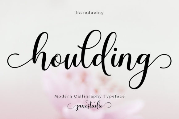 Print on Demand: Houlding Script & Handwritten Font By Zane Studio