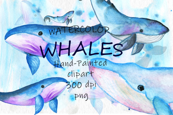 Watercolor Whales Sea Animals Watercolor Graphic Illustrations By SavirinaArt