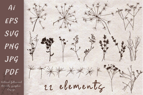 Print on Demand: Imprints of Natural Elements Graphic Crafts By Светлана Зиновьева