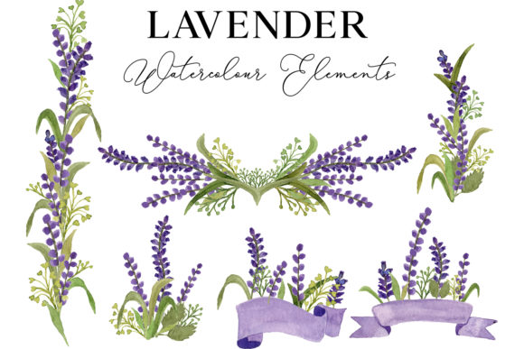 Lavender Flower Watercolor Illustration Graphic Illustrations By Monogram Lovers