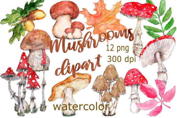 Watercolor Mushrooms Clipart Graphic Illustrations By arevkasunshine