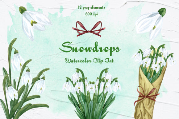 Snowdrops Watercolor Clip Art Graphic Illustrations By BarvArt