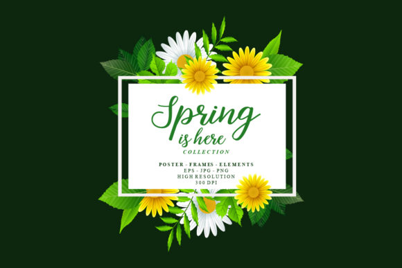 Spring Frames Floral Vector Collection Graphic