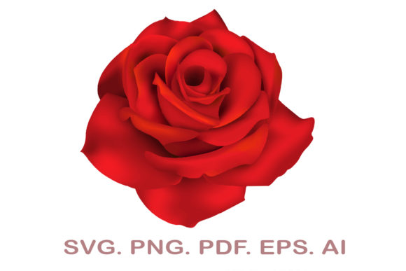 Red Rose SVG Graphic Crafts By NarCreativeDesign