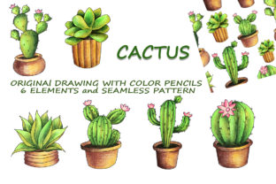 Print on Demand: Cactus Drawings Graphic Illustrations By Galarta